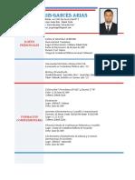 Curriculum JOrge Luis (2)