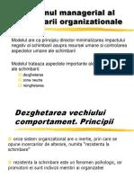 2 Programul Managerial Al Schimbarii Organizationale