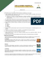 24. Plantas Silvestres Comestibles-Especialidad Desarrollada (2)
