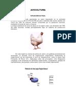 LIBRO_DE_AVES.doc