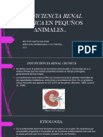 Insuficiencia Renal Crónica en Pequños Animales Milton Garcia