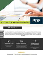 Revista Sistema de informacion gerencial
