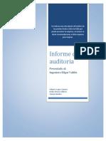 Documento Presentacion Informe Auditoria