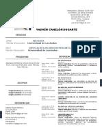 Currículum Yasmín C. Canelón D-converted