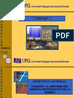 Vdocuments.mx Unidad 2 Anatomia de Aparato Reproductivo de La Hembra