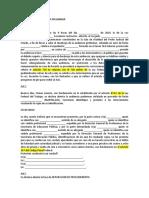 PROTOCOLO DE AUDIENCIA PRELIMINAR.docx