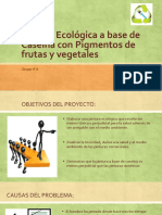 Presentacion Eco-Pintura Biologia