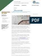 Mapa Da Obra - Entrevista Sahade Sobre Patologia de Fachadas