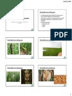 Aula 9 - Melhoramento de Plantas Para a Resistência a Doenças (1)