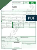 Declaracion Importacion Simplificada 510 2013