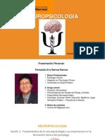 SESION N 1 Fundamentos de La Neuropsicología
