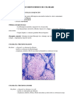 Inflamatie Cronica (1)