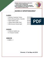 INFORME-10-HIPOTENSORES-E-HIPERTENSORES.docx