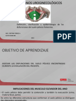 Definición, Clasificación y Epidemiología de Las Disfunciones Del Suelo Pélvico Femenino