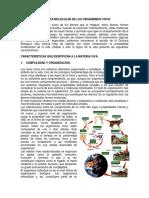 1rLA LOGICA MOLECULAR DE LOS ORGANISMOS VIVOS1.docx