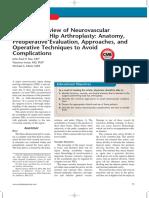 Structures in Hip Arthroplasty