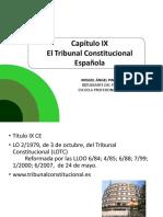Reforma y Tribunal Constitucional Española