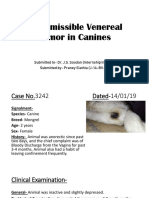 Transmissible Venereal Tumour