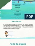 U.2 EXP. CICLOS OXIGENO Y AZUFRE.pptx