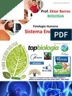 Aula 1 Sistema Endócrino_1315119966