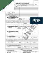 Resumen Curricular Formato Unefa 2010