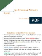 Chap 8 - Nervous Tissue