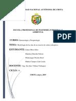 INFORME P. 3