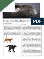 carolyn sparacio - copy of feature article design template  1