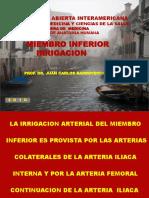 30927633-Arterias-Miembro-Inferior.ppt