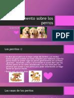 Documento Sobre Los Perros