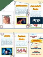 TRIPTICO Enfermedades Del Sistema Circulatorio