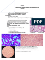 Pathology Slides 1