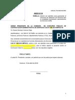 002- Anexos - Convocatoria 2019 Cas 02 (1)