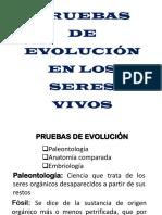 Pruebas de Evolución y La Célula 2019
