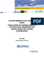 Línea de Base - PEA Santa Rosa de Copán