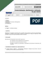 NPT 029 Norma Bombeiros