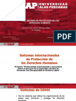 5 Sistema de Proteccion Derechos Humanos