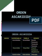 Familia Ascarididae