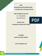 Matriz DOFA Proyecto de Vida