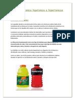 Bebidas isotonica