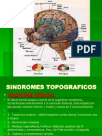 Sindromes Topograficos
