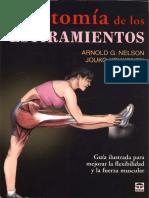 anatomia estiramientos.pdf