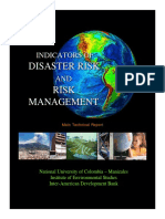 Disaster Risk Report IDEA