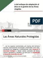 Mesa 05 - Rudy Valdivia SERNANP - Incorporacion Enfoque Adaptacion ANP