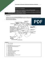 PRACTICA 10 A Y B.pdf