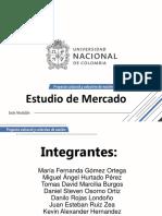 SP1_Estudio de Mercado
