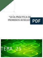T24 Aux v17 Parto