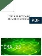 T23_aux_v17_cuerp_ex.pdf
