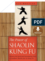7. the Power of Shaolin Kung Fu