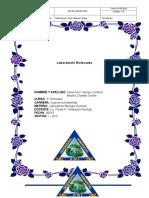 Lab Moléculas-PV Parte 2 Laboratorio_